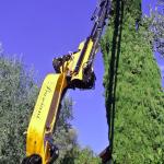 Gru cingolata - Effer 525 - Cestello per taglio alberi